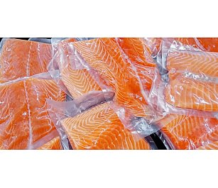 NZ King Salmon Frozen